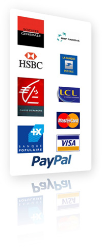 Payment Method: Paypal and banks