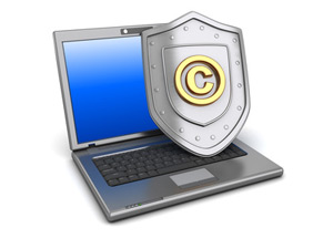 Intellectual Property Rights Protection for Professional Website