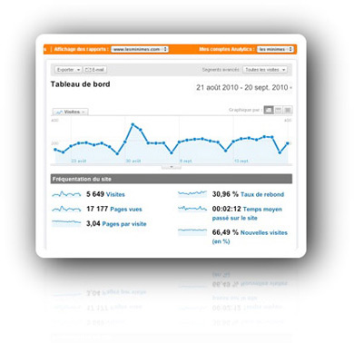 Visits statistics for a professional website